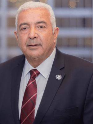 Hesham Kotby, Board Member